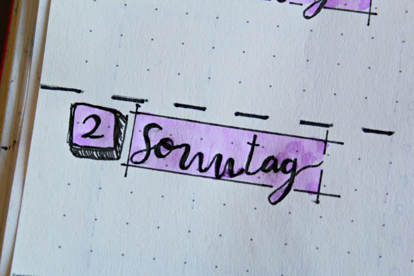 weekly13