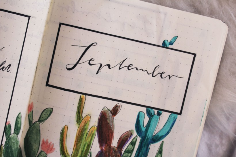 september_bullet_journal_cactus3