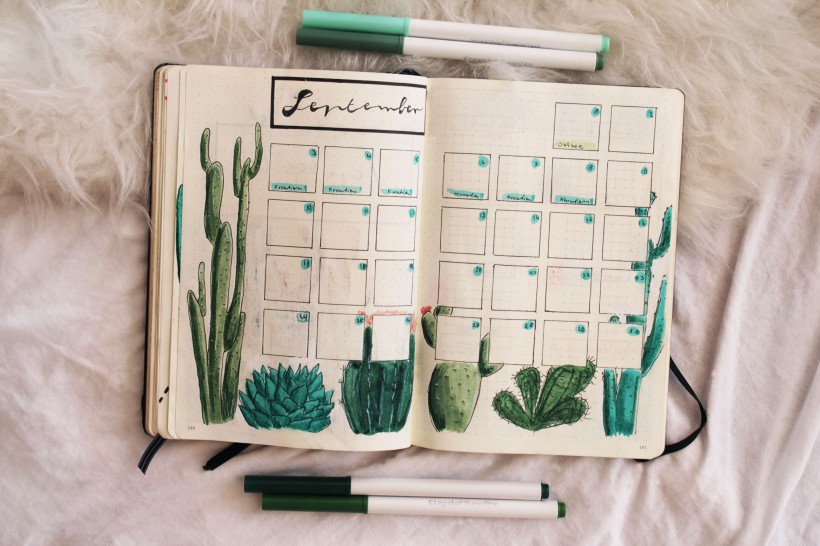 september_bullet_journal_cactus4