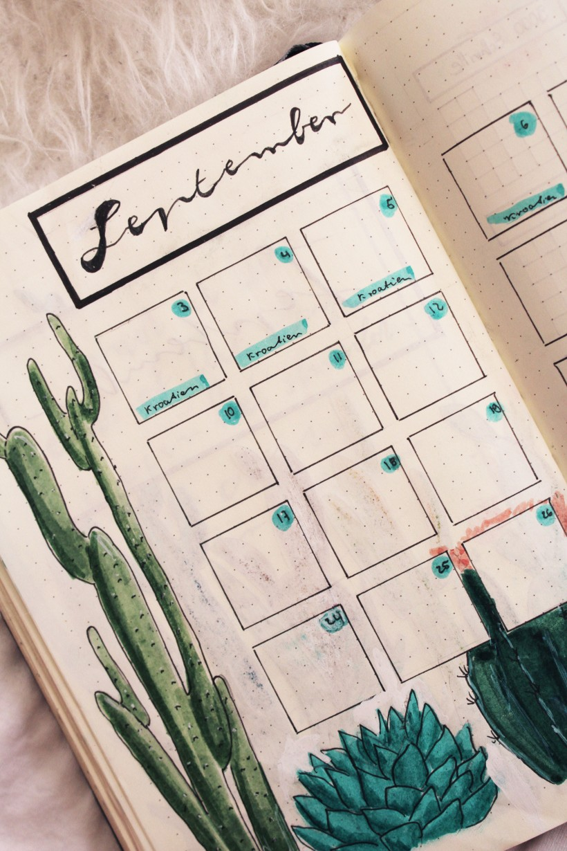 september_bullet_journal_cactus5