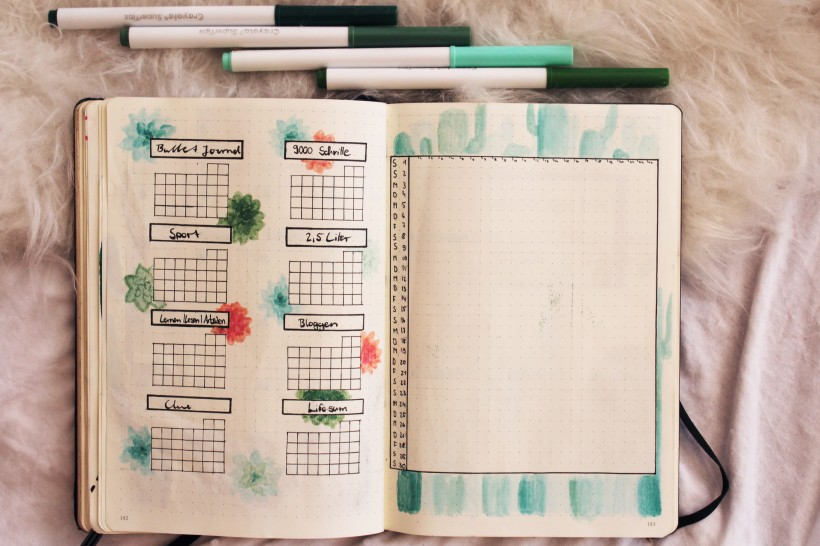september_bullet_journal_cactus6