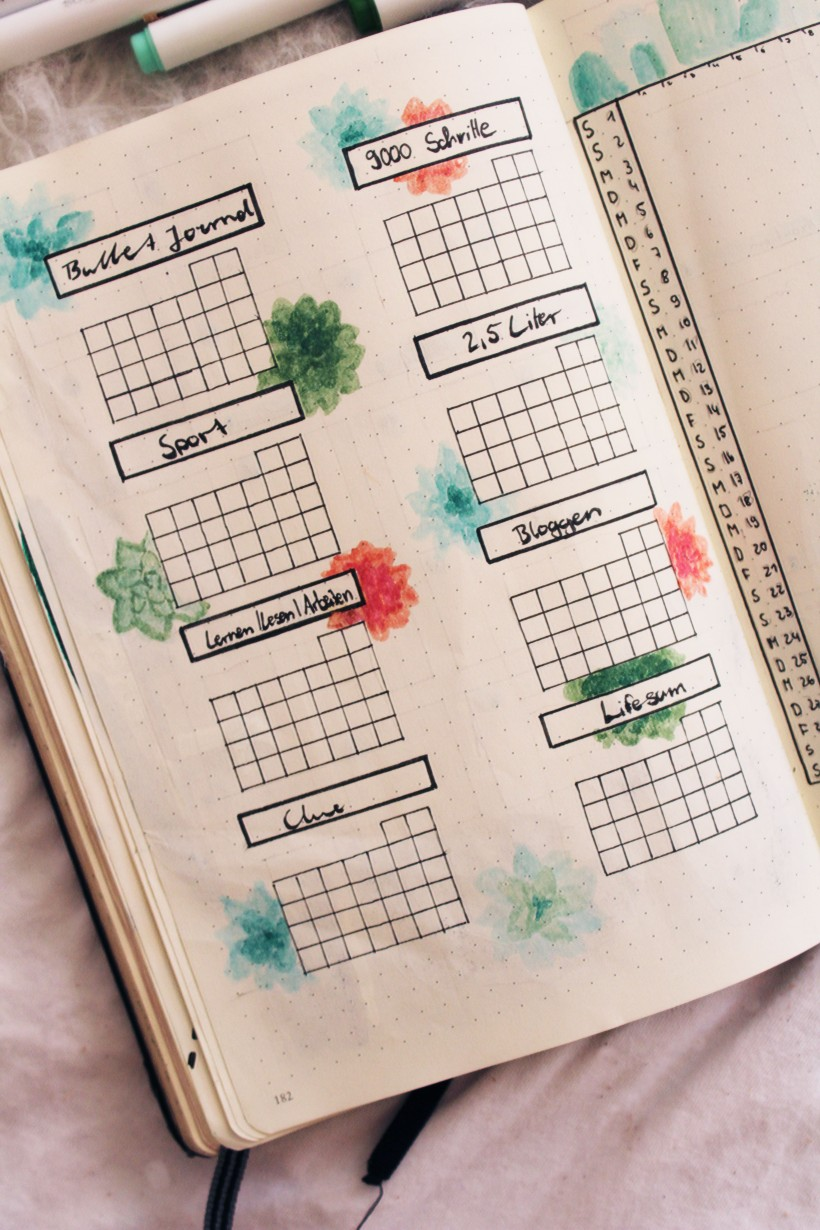 september_bullet_journal_cactus7