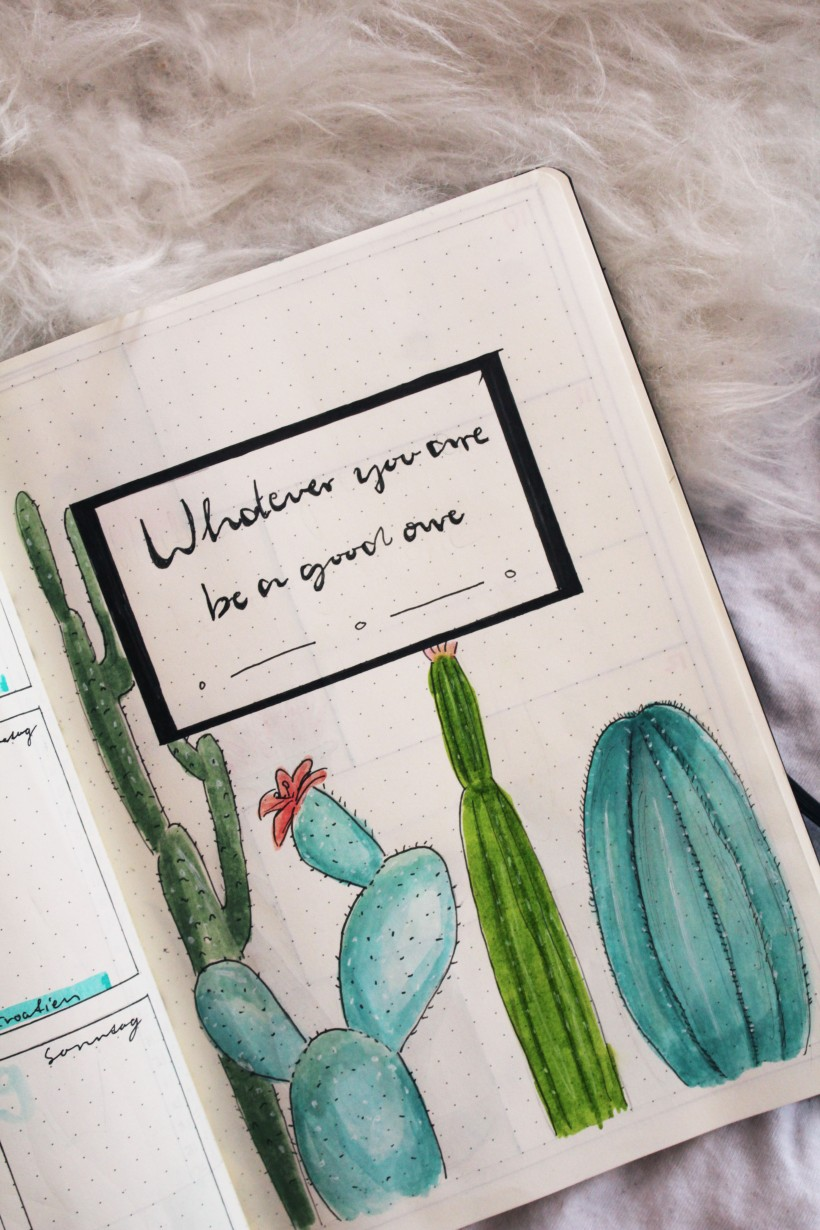 september_bullet_journal_cactus9